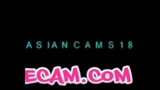 Love Free Cam